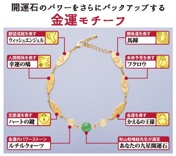 九星ミリオンブレスのモチーフ詳細