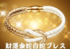 水晶院の財運金蛇白蛇ブレスは美的効果もある!
