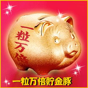 一粒万倍貯金豚の画像