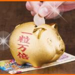 一粒万倍貯金豚にお金を入れるところ