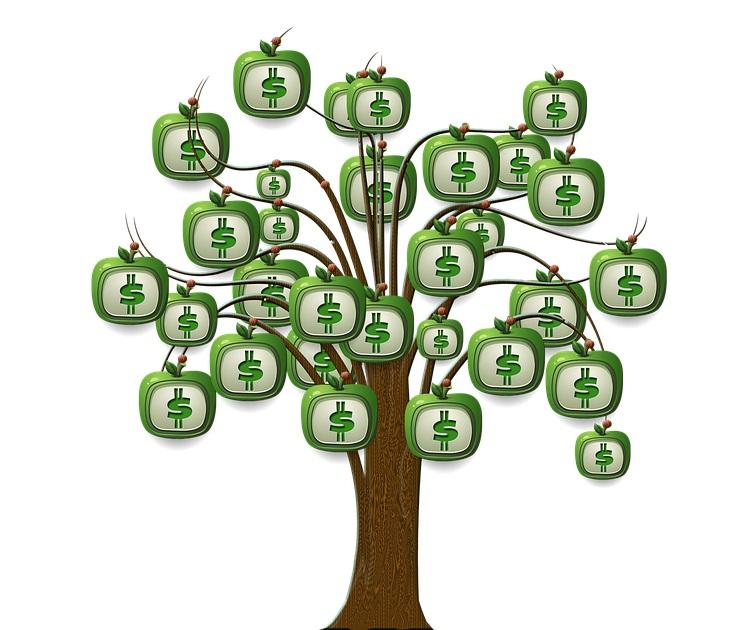金運力のイメージ!お金のなる木