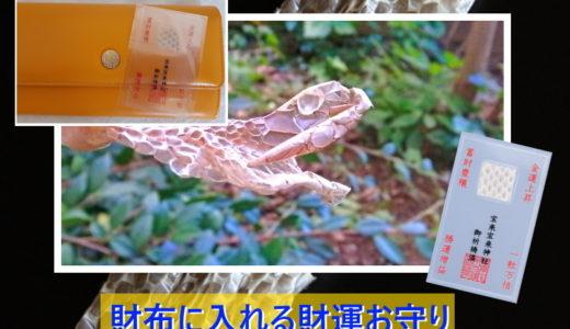 財布に入れる財運お守り【蛇の抜け殻金運法】