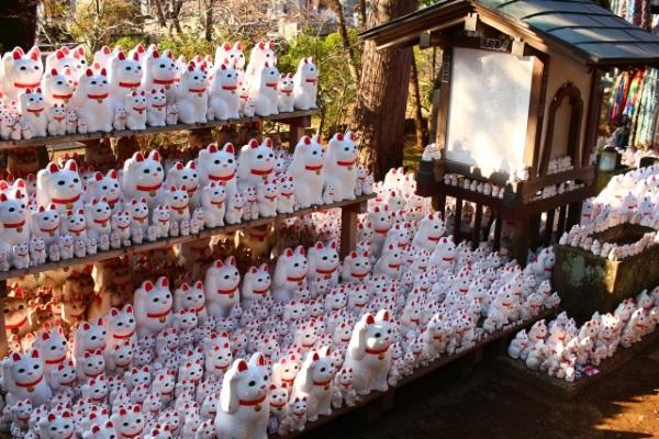 豪徳寺の招き猫の数がすごいぞ!